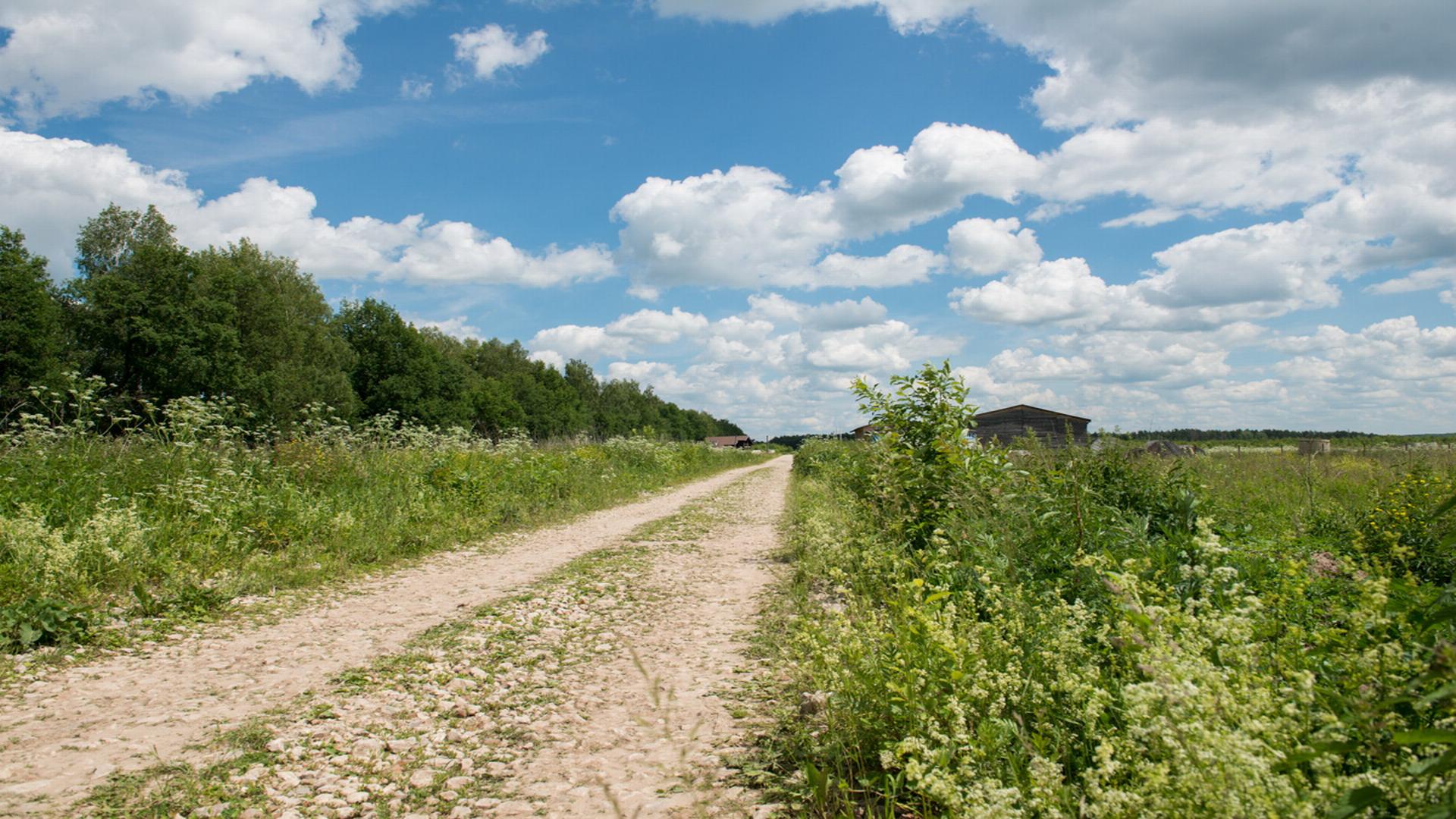 Участки в деревне Кошкино